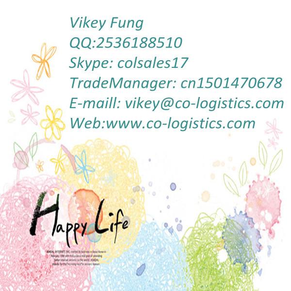 Vikey.jpg