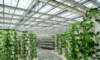Large Multi-span Glass Greenhouse-commercial greenhouses