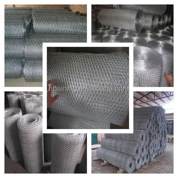 High quality and lowest price Anping hexagonal mesh
