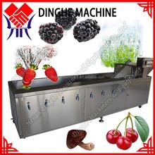 Made in China mongo, pineapple, cherry, tomato, apricot, litchi bubble type washing machine
