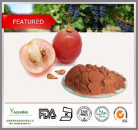High quality Natural Grape Seed Extract 95% OPC, Grape extract in bulk