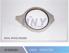 SCHWING SEAL RING DN250