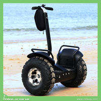 E-mark CE approved electric standing 400cc motorcycle for adult