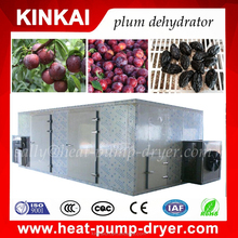 Popular Dryer and chamber for fruits vegetables fish herb energying saving 75% drying machine