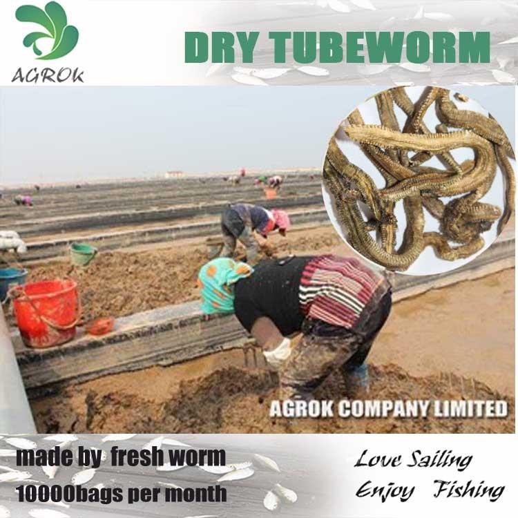 Dry Tubeworm Fish Bait Fishing Lure - Buy Fishing Lure,Fish Bait,Worm Product on Alibaba.com