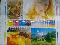 Hot foil ribbon Advertisement 6 color Flexo printing machine