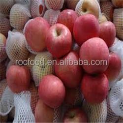 Chinese best price fresh fuji apple exporter