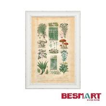Vegetables Kitchen Wall Art /framed photo pictures/ kitchen decor arts