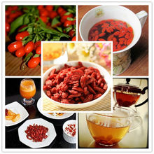 Goji berries dried fruit conventional goji berries and organic goji berries