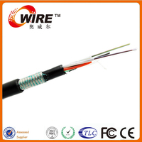 China Manufacturer Optional Length GYTY53 Single Mode 24 Core Armoured Cable For Outdoor