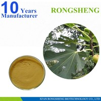 Best Selling Natural Organic Fig Leaf Extract