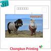 /product-gs/highly-3d-deepth-effect-3d-lenticular-4c-uv-printing-horse-animal-printing-3d-lenticular-postcards-60239446765.html