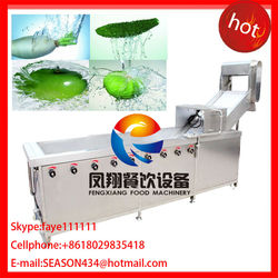 WA-1000 air bubble fruit and basil washing machine fennel washing machine