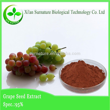 Organic grape seed extract grape seed powder for grape seed extract softgel capsule