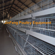 A type chicken cage equipment for broiler breeding automatic system