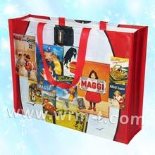 Reusable Custom PP Laminated Bag/ Laminated PP Bag, Nonwoven Laminated Bag