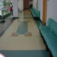 Pvc Sport Flooring details from Everjade
