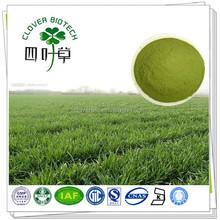 100% natural green barley grass powder with free sample