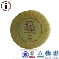 20g 5Star Hotel Bath Soap Names of Beauty Soaps for Glowing Skin
