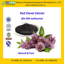 GMP Factory Manufacturer Supply High Quality Red Clover Extract