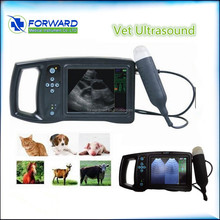 Handheld Portable Ultrasound Machine for Pregnancy with Clear Image