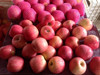 China fresh fruits apples in Carton Package hot sale in Middle East with HACCP,ISO,GLOBAL GAP