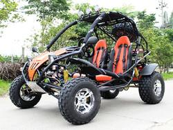 Europe EEC Certified Modern Design Go Kart/Buggy