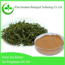 Green tea extract powder/green tea extract capsules/bio green tea extract