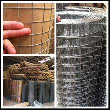 1 inch / 1x1 opening size galvanized welded wire mesh, galvanized iron wire mesh, welded wire netting (30 year factory (I - 022)