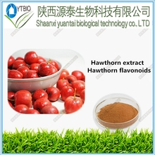 (The spot factory supply)High quality Hawthorn extract hawthorn flavonoids