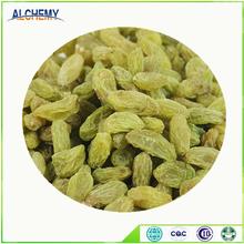 China manufacture competitive price raisin india