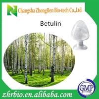 GMP Factory Supply Cosmetic grade Birch Bark Extract/Betulin/betulinic acid