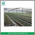 vegetales de riego por goteo cinta de riego por precio