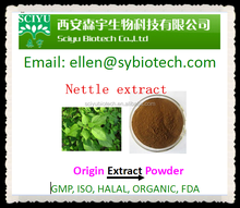 Supply Natural Stinging nettle extract
