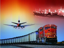 Low price new arrival qingdao sea freight forwarder to chile