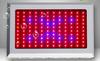 hot sale LED grow light red/blue/full spectrum/sunlight