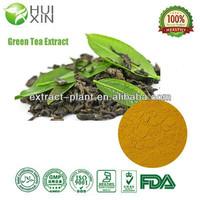 China Supplier Free sample high quality Green Tea Extract 30%