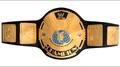 Nuevo estilo de oro de lucha libre de la correa