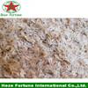 cold resistant paulownia shan tong seed paulownia hybrid 9501 seed paulownia seed for planting