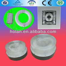 induction modern ceiling lamp