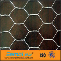 Professional Manufacture Chicken Coop Galvanized Wire Mesh (manufacture And Export)