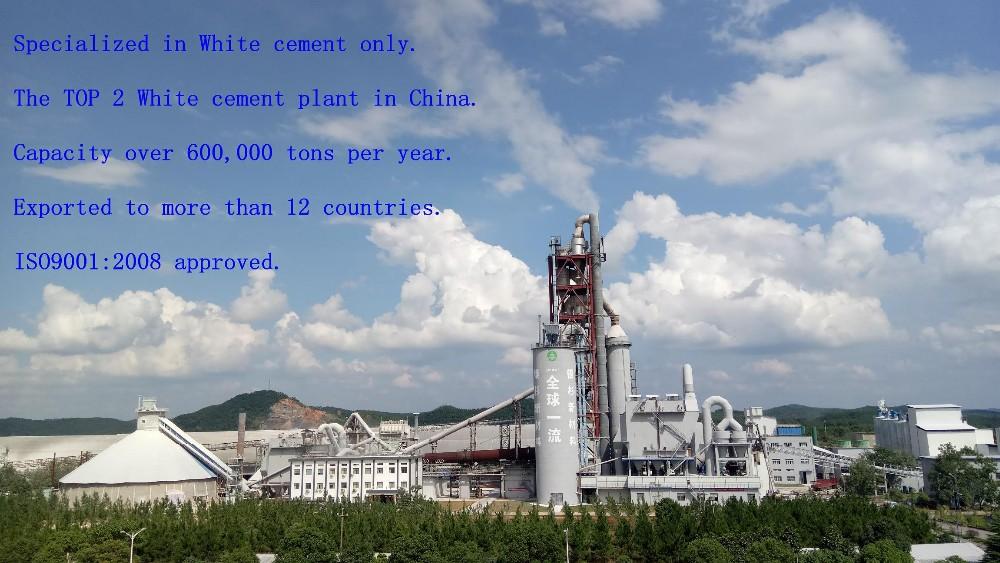 White cement plant0