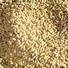 hua sheng guo shelled peanut Cheap Peanut For Sale