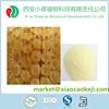 Best selling 4%-6% Lyophilized royal jelly/Lyophilized royal jelly powder