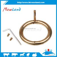 Brass Bull nose Ring full size Bull ring