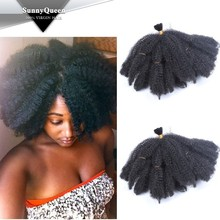 Sunny Queen Afro kinky curly synthetic hair braids for black women
