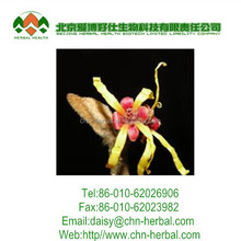 2013 factory Garden Fencing top 1 Garden decoration fence witch hazel extract