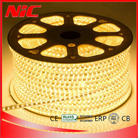 High Brightness 5050 flexible waterproof rgb led strip 24v