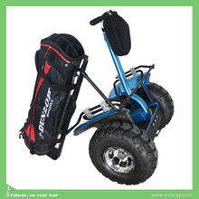Factory price 2 wheel electric golf scooter, High quality chopper motorcycle for sale cheap