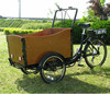 CE approved manufacturer supply new electric tricycle /new 3 wheel electric bicycle /europe hot sale cargo bike